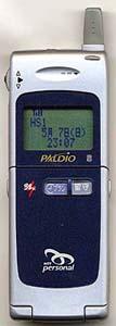 paldio314s.jpg (12860 バイト)